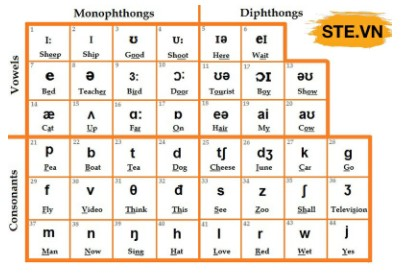 Ký tự đặc biệt ngữ âm